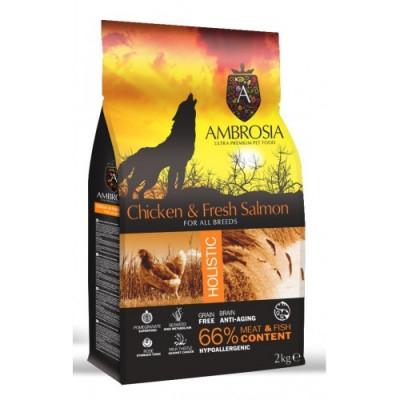 AMBROSIA GRAIN FREE DOG ADULT CHICKEN & FRESH SALMON